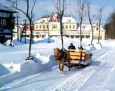 Hokkaido-in-winter