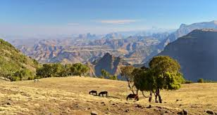 Travel Destination - Ethiopia